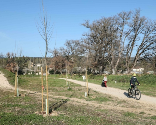 The Demetra center by GeneraLife plants 100 trees in Florence