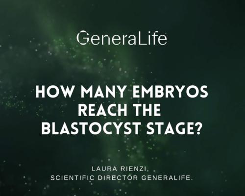 ¿Cuántos embriones llegan a la fase de blastocisto?